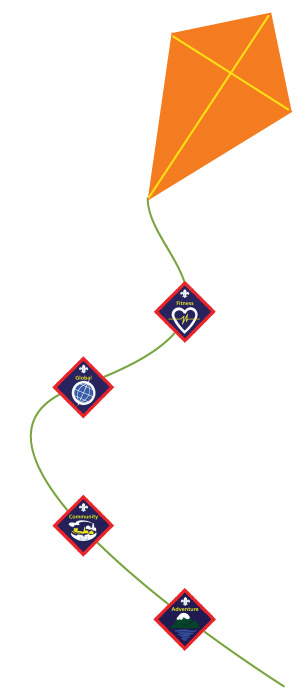 Badges on a kite